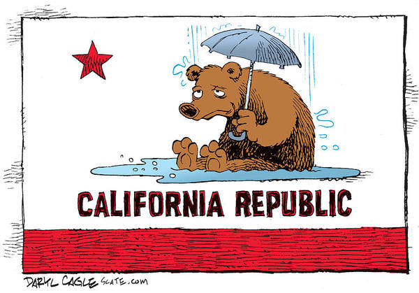 Drawing - California Rain by Daryl Cagle