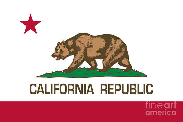 California Coast Digital Art - California Republic State Flag Authentic Version by Bruce Stanfield