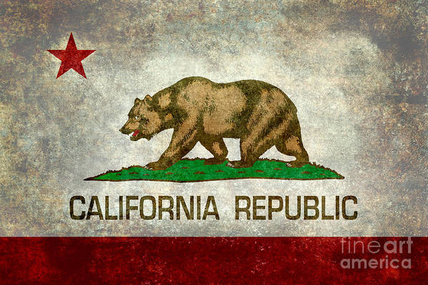 Vintage Wall Art - Digital Art - California Republic State Flag Retro Style by Bruce Stanfield