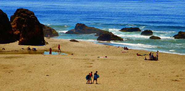 Photograph - California Seashore by Frank Wilson