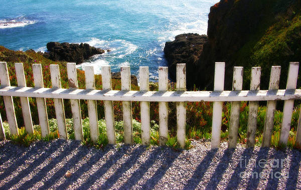 Photograph - California Seaside Fence by Carol Groenen