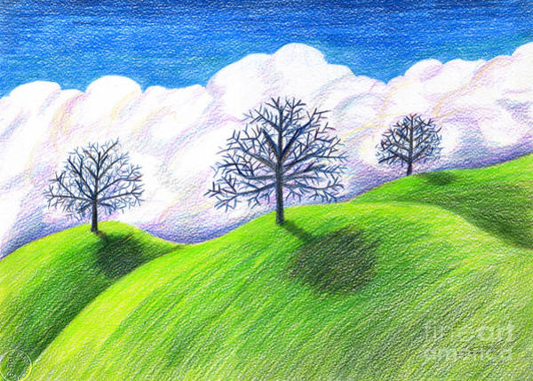 Drawing - California Spring Drawing by Kristen Fox