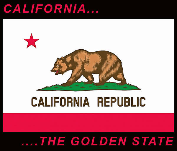 Painting - California State Flag by Floyd Snyder