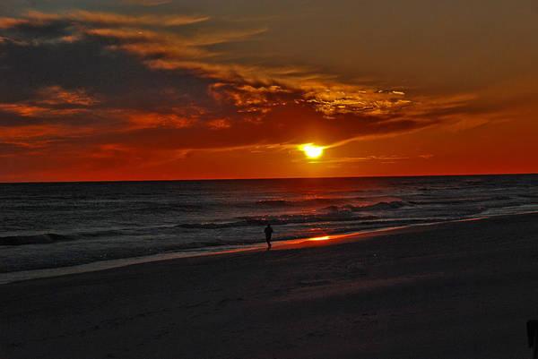 Photograph - California Sun by Susanne Van Hulst