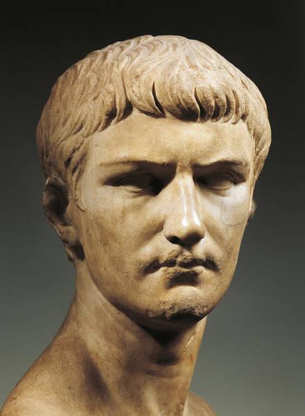 Emperor Photograph - Caligula by Roman School