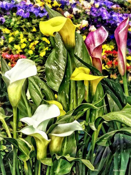 Photograph - Calla Lilies And Pansies by Susan Savad