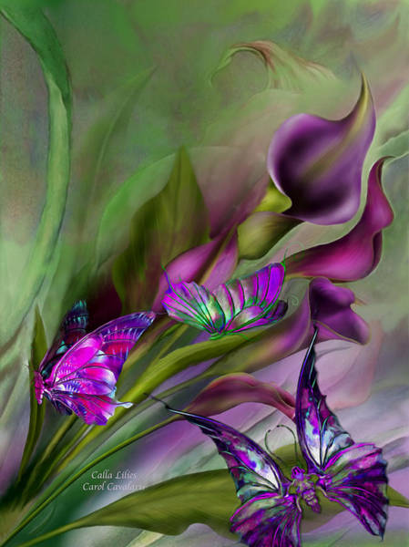 Wall Art - Mixed Media - Calla Lilies by Carol Cavalaris