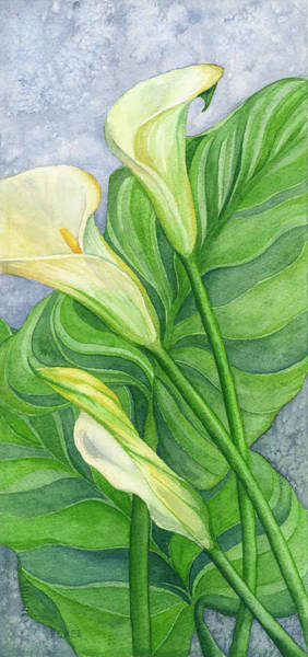 Painting - Calla Lilies  by Lorrisa Dussault