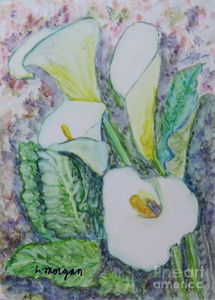 Painting - Calla Lillies by Laurie Morgan
