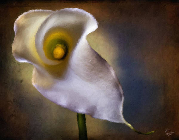 Photograph - Calla Lilly Faux Oil Painting by Endre Balogh