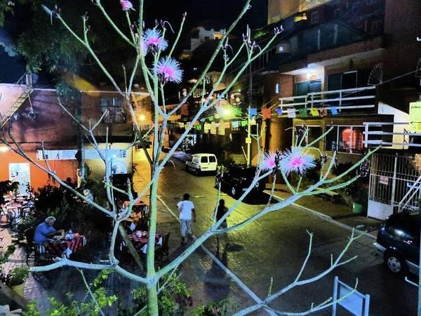 Photograph - Calle Adelita by Rosanne Licciardi