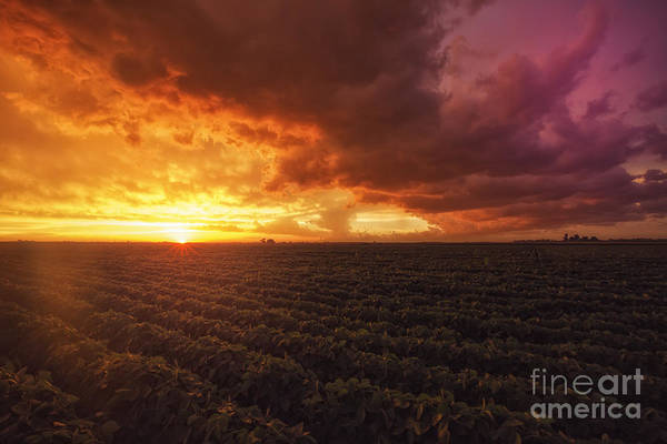 Photograph - Calm Before The Storm by Tim Wemple