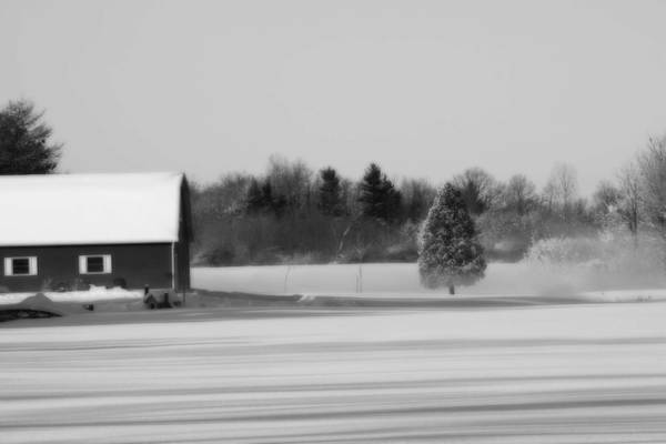 Photograph - Calm Black And White  by Cathy Beharriell