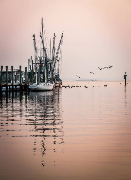 Photograph - Calm Evening On Shem Creek by Donnie Whitaker