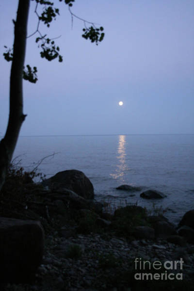 Photograph - Calm Lake And Moon by Mary Mikawoz