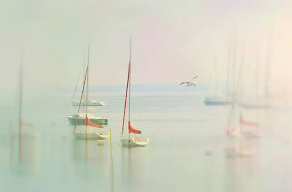 Wall Art - Photograph - Calm The Sea by Diana Angstadt