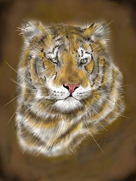 Digital Art - Calm Tiger by Darren Cannell