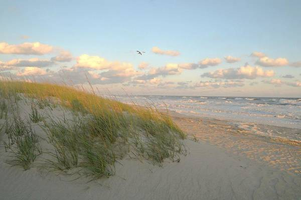 Wall Art - Photograph - Calming Shore by Diana Angstadt