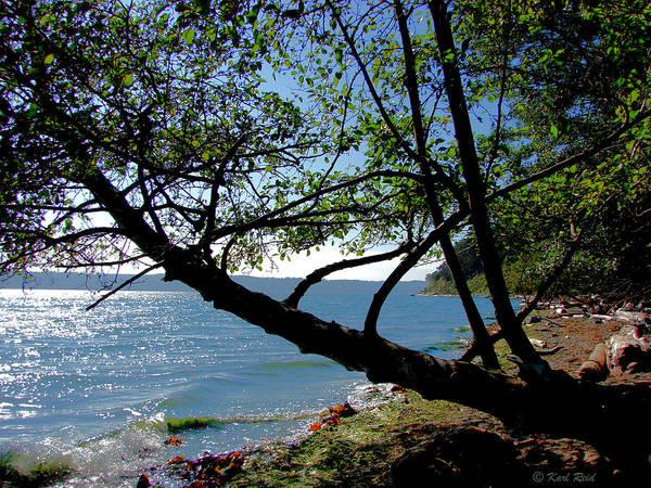 Shady Cove Photograph - Cama Beach by Karl Reid