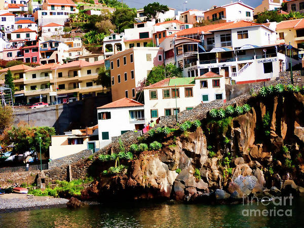 Photograph - Camara De Lobos On The Island Of Madeira by Brenda Kean