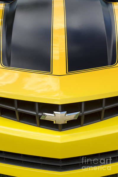 Wall Art - Photograph - Camaro Muscle by Tim Gainey