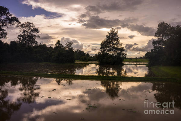 Angkor Wall Art - Photograph - Cambodia Rice Fields Clouds Reflection by Mike Reid