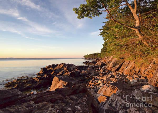 Photograph - Camden Shoreline At Dawn, Camden, Maine  -43881 by John Bald