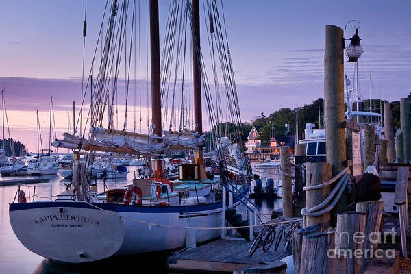 Wall Art - Photograph - Camden Windjammer Dawn by Susan Cole Kelly