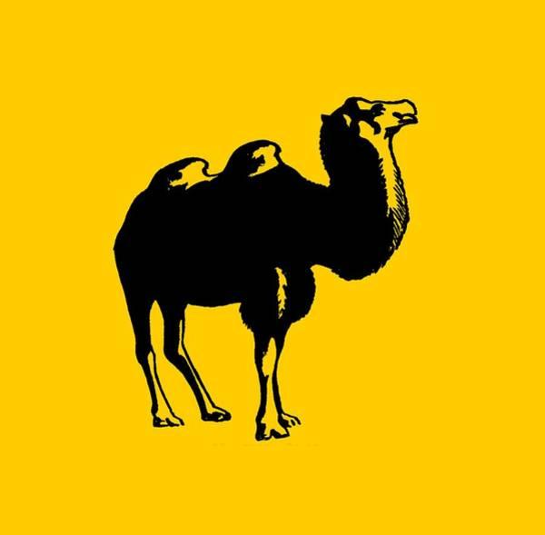Digital Art - Camel - Camel Tee Shirt by rd Erickson