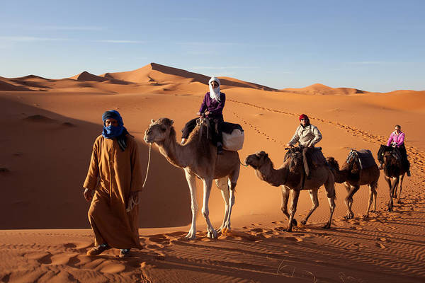 Photograph - Camel Caravan by Aivar Mikko