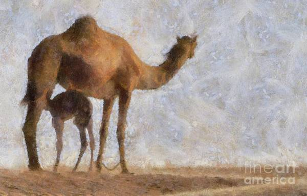 Wall Art - Painting - Camel Life by Sarah Kirk