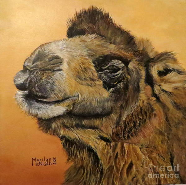 Wall Art - Painting - Camel by Marilyn McNish