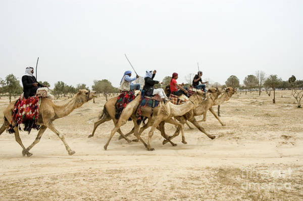 Jocky Photograph - Camel Race In The Desert by Shay Levy