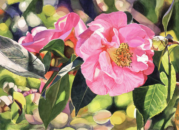 Painting - Camelia Fantastique by David Lloyd Glover