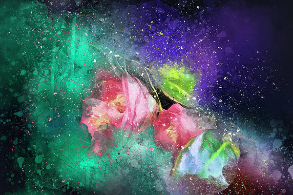 Photograph - Camellias In A Galaxy Far Far Away by Kay Brewer