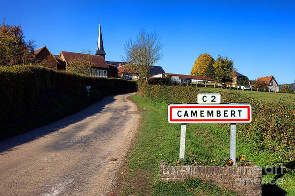 Wall Art - Photograph - Camembert by Olivier Le Queinec
