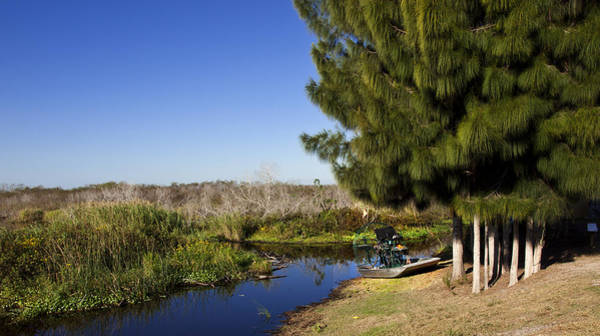 Airboat Photograph - Camp Holly On The St Johns River In Florida by Allan  Hughes