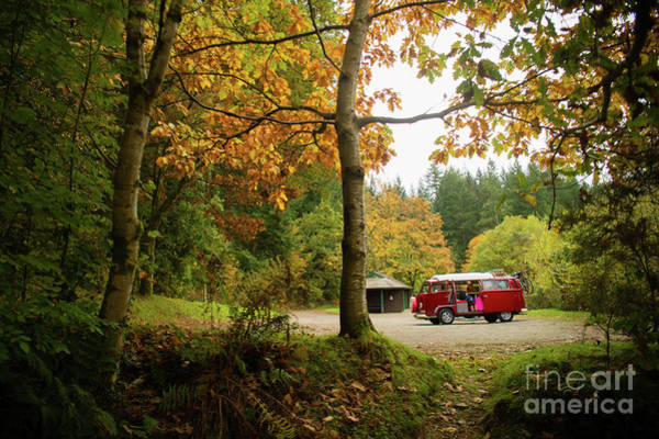 Photograph - Campervan In The Autumn Woods by Keith Morris