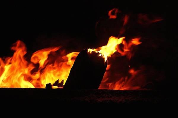 Wall Art - Photograph - Campfire - 2 by Dahlia Tumavicus