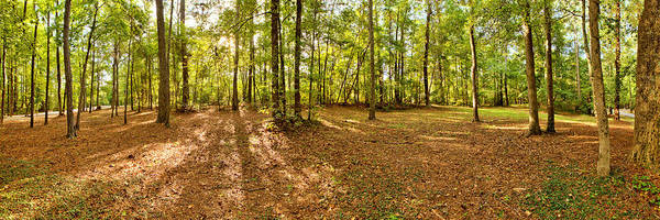 Photograph - Campground Panoramic At Fdr State Park by Gordon Elwell