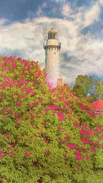 Photograph - Cana Island Lilacs by Susan Rissi Tregoning