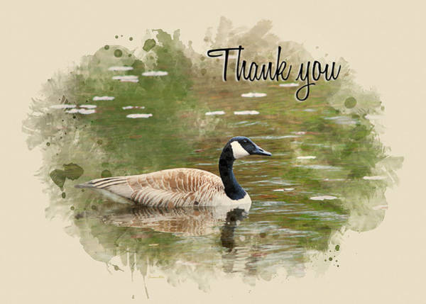 Mixed Media - Canada Goose Watercolor Thank You Card by Christina Rollo