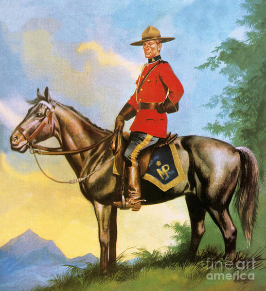 Reins Painting - Canadian Mountie by Ron Embleton