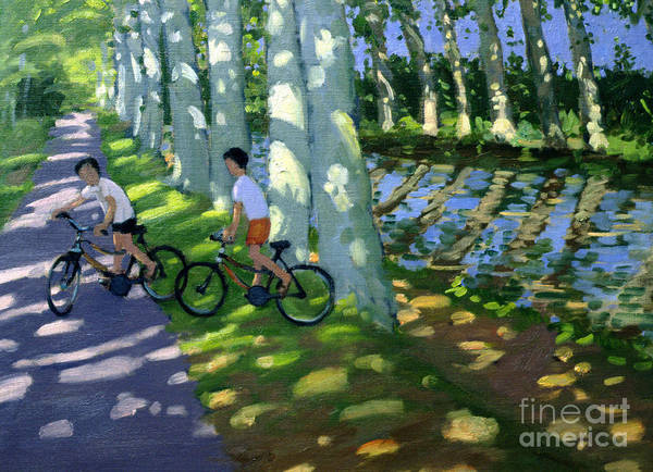 Dappled Light Painting - Canal Du Midi France by Andrew Macara