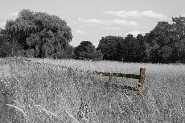 Photograph - Canandaigua Fence by Dylan Punke