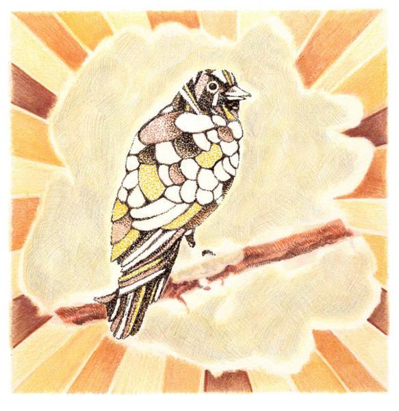 Stipple Drawing - Canary by Karl Frey