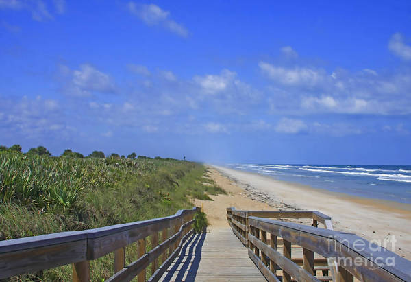 Photograph - Canaveral Walkway by Deborah Benoit