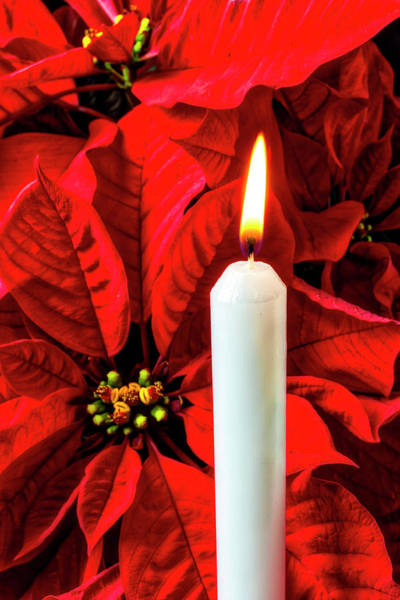 Foilage Photograph - Candle And Poinsettia by Garry Gay