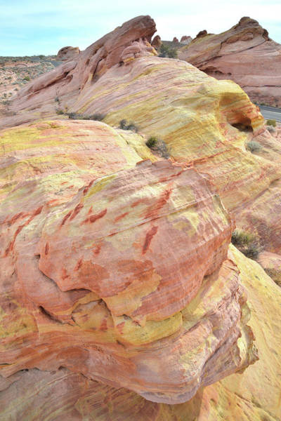 Photograph - Candy Colored Sandstone In Valley Of Fire by Ray Mathis
