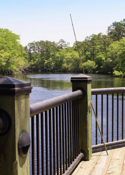 Photograph - Cane Fishing Pole By The Waccamaw by MM Anderson